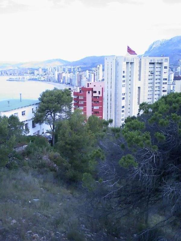 Levante Area  Rincón De Loix